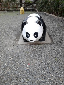 かわいくないパンダ