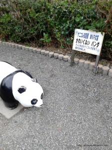 かわいくないパンダ2