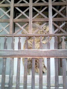 大興寺の仁王門の金剛力士像右