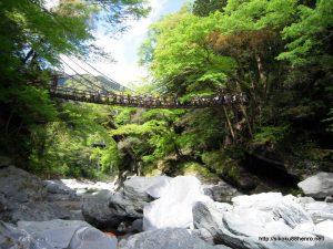 祖谷かずら橋-2
