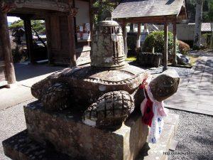 延光寺の赤亀