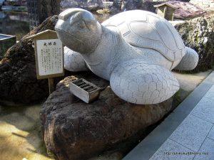 金剛福寺の大師亀
